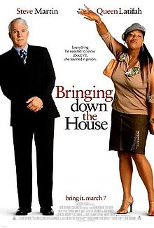 Bringing Down the House film