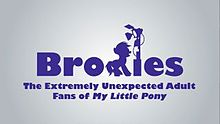 Bronies The Extremely Unexpected Adult Fans of My Little Pony