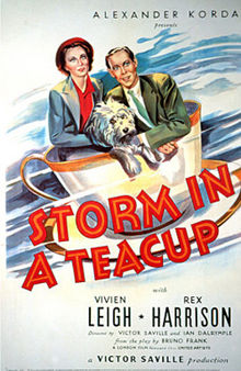 Storm in a Teacup film