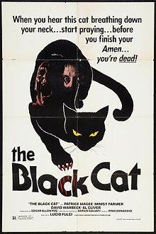 The Black Cat 1981 film