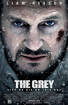 The Grey film