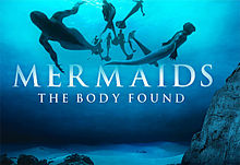 Mermaids The Body Found