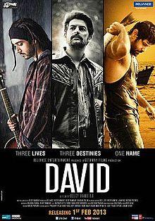 David 2013 Hindi film
