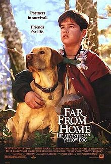Far from Home The Adventures of Yellow Dog