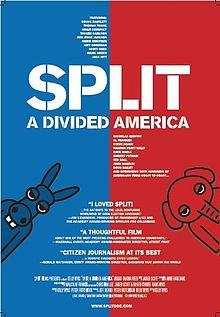 Split A Divided America