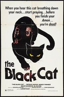 The Black Cat 1981 film