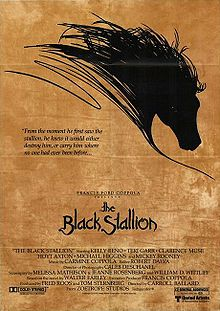The Black Stallion film