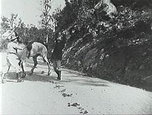 Thunderbolt 1910 film